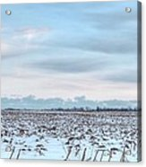 Winter Farm Field Acrylic Print
