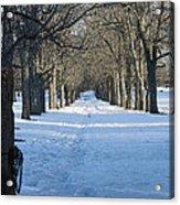 Winter Foot Prints Acrylic Print