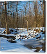 Winter Forest Stream Acrylic Print