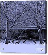 Winter Geese Retreat Acrylic Print
