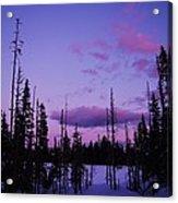 Winter Glow Acrylic Print by Angi Parks