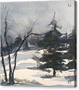 Winter Grey Acrylic Print