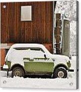Under Snow Acrylic Print