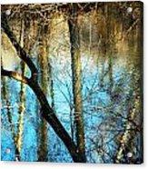 Winter Hike Acrylic Print