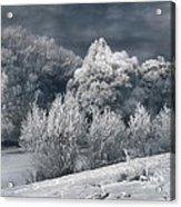 Winter - IIi Acrylic Print by Akos Kozari