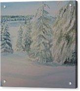 Winter In Gyllbergen Acrylic Print
