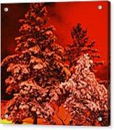 Winter In Minneapolis Acrylic Print