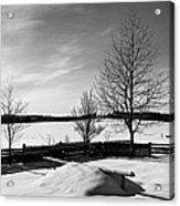 Winter In Roztocze Acrylic Print