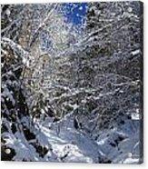 winter in the Bavarian alps 2 Acrylic Print