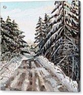 Winter In The Boons Acrylic Print by Shana Rowe Jackson