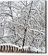 Winter In The Heartland 1 Acrylic Print