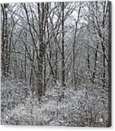 Winter In The Heartland 5 Acrylic Print