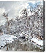 Winter In The Heartland 9 Acrylic Print