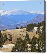 Winter In The Pike National Forest Acrylic Print