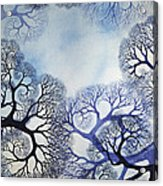 Winter Lace Acrylic Print by Helen Klebesadel