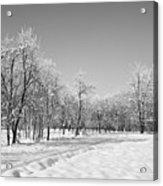 Winter Landscape In Bw Acrylic Print