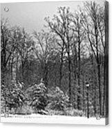 Winter Light Post Acrylic Print
