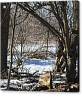 Winter Log Acrylic Print