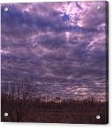 Winter Mood Acrylic Print by Kelly Kitchens