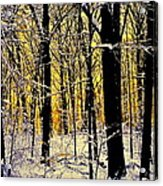 Winter Mood Lighting Acrylic Print