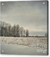 Winter Morning Acrylic Print