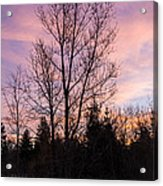 Winter Morning Sky Acrylic Print