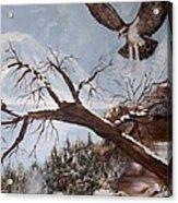 Winter Nesting Acrylic Print