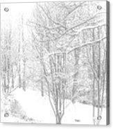 Winter Of '14 Acrylic Print