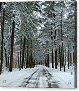 Winter On Mohegan Park Road Acrylic Print
