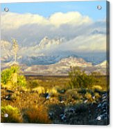 Winter In The Organ Mountains Acrylic Print