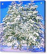 Winter Painting Acrylic Print