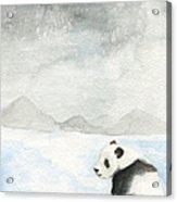 Winter Panda Acrylic Print by Erica Vojnich