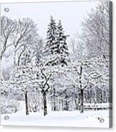Winter Park Landscape Acrylic Print