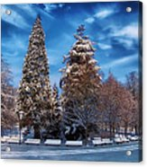 Winter Park Acrylic Print