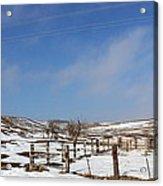 Winter Pasture Acrylic Print