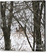 Winter Family Pause  Acrylic Print