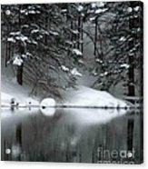 Winter Reflection 004 Acrylic Print