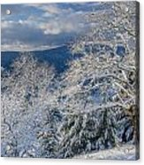 Winter Scene At Berry Summit Acrylic Print