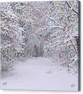 Winter Scene With Lights Acrylic Print