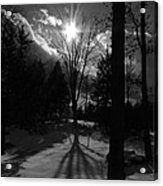 Winter Shadow Acrylic Print