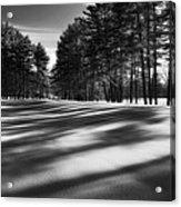 Winter Shadows Acrylic Print