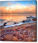 Winter Shore Acrylic Print