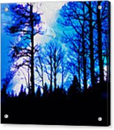Winter Silhouettes - Ghost Eagle Acrylic Print