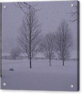 Winter Silhouettes Acrylic Print
