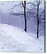 Winter Slope Acrylic Print