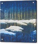 Winter Solace Acrylic Print