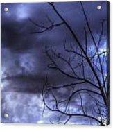 Winter Storm 2 Acrylic Print