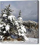 Winter Storm On Natural Bridge - D001598 Acrylic Print