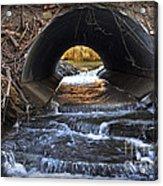 Winter Stream Media Acrylic Print