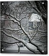 Winter Street Acrylic Print by Joyce Kimble Smith